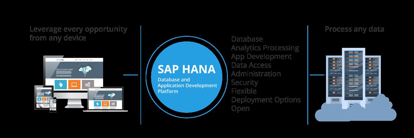 ERP for SME's | Analytics Powered by SAP HANA